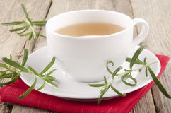 Rosemary herbal tea in a cup Royalty Free Stock Images