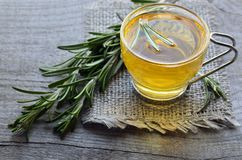 Rosemary herbal tea in a glass cup with fresh green rosemary herb on rustic wooden background. Selective focus royalty free stock images