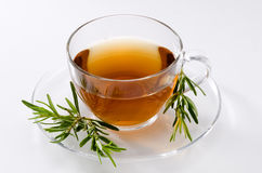 Rosemary Herbal Tea Royalty Free Stock Image