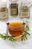 Rosemary Herbal Tea Royalty Free Stock Photography