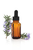 Rosemary Herbal Therapy Stock Photo