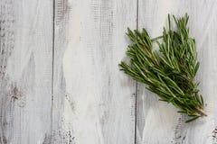 Rosemary Herbs Fotografia Stock