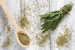 Rosemary Herbs Fotografia Stock Libera da Diritti