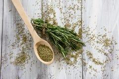 Rosemary Herbs Immagine Stock Libera da Diritti