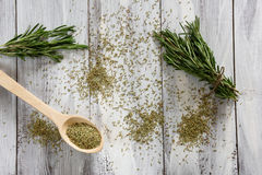 Rosemary Herbs Immagine Stock
