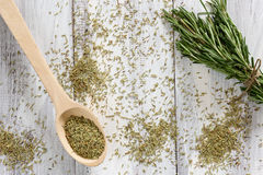 Rosemary Herbs Stockbilder