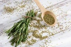 Rosemary Herbs Lizenzfreie Stockfotos