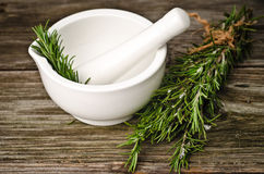 Rosemary and pestle Royalty Free Stock Photography