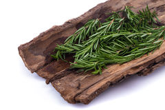Rosemary Herbs and Medicinal herbs. Organic healing herbs. fresh. Rosemary bunch rosemary isolated on white background royalty free stock image