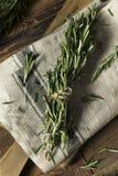 Rosemary Herbs orgânica verde crua fotografia de stock royalty free