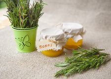 Rosemary honey Stock Photo