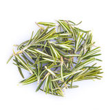 Rosemary isolated on a white background Royalty Free Stock Photography