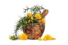 Rosemary-Kraut und wilde Blumen lizenzfreie stockfotografie