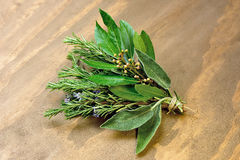 Rosemary, laurel and sage Royalty Free Stock Photo