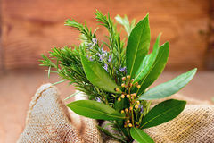 Rosemary, laurel and sage Royalty Free Stock Photography