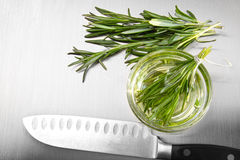 Rosemary leaves with cutting on stainless steel Royalty Free Stock Photos