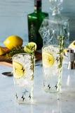 Rosemary Lemon Gin Fizz Alcoholic-Cocktail royalty-vrije stock afbeeldingen