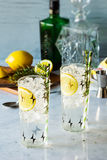 Rosemary Lemon Gin Fizz Alcoholic Cocktail royalty free stock images