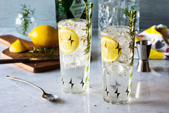 Rosemary Lemon Gin Fizz Alcoholic Cocktail Stock Photos