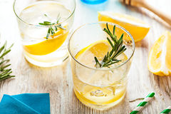 Rosemary lemonade cold cocktail drink Royalty Free Stock Images