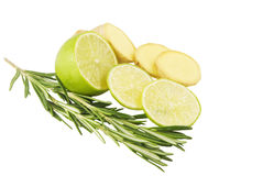 Rosemary lime and ginger. Branch of rosemary and lime and ginger Royalty Free Stock Photo