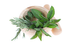 Rosemary and mint in a wooden pounder Royalty Free Stock Photos