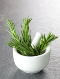 Rosemary in a mortar Stock Images