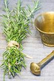 Rosemary with mortar Stock Image