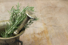 Rosemary and mortar Royalty Free Stock Images