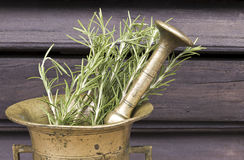 Rosemary in a mortar Royalty Free Stock Photo