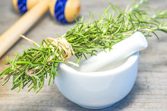 Rosemary with mortar Stock Images
