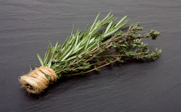 Rosemary n Thyme Stock Photo