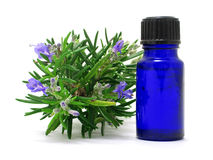 Rosemary Oil Royalty Free Stock Photos