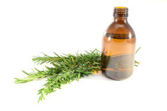 Rosemary oil royalty free stock photo