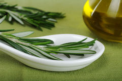 Rosemary with Olive Oil Stock Images