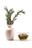 Rosemary and olives. Fresh sheaf of rosemary standing in vase with bowl of olives and olive oil, isolated on white Stock Images