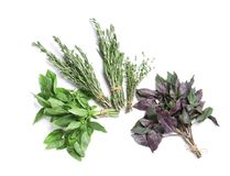 Rosemary and other aromatic herbs. On white background, top view stock photo