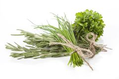 Rosemary, parsley and chives Stock Images