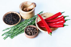 Rosemary, pepper, spices, mortar Royalty Free Stock Images