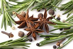 Rosemary, peppercorn, cloves and anise Stock Images