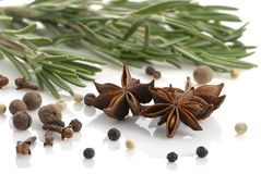 Rosemary, peppercorn, cloves and anise Stock Photography