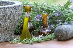 Rosemary Plants e óleo Fotografia de Stock Royalty Free