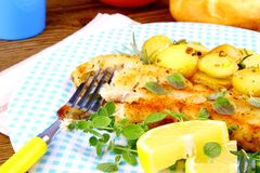 Rosemary potatoes and fish fillet fried with vegetables Stock Photos