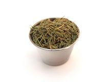Rosemary in Ramekin Royalty Free Stock Photo