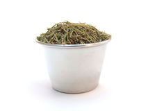 Rosemary in Ramekin Royalty Free Stock Image