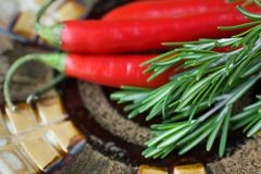 Rosemary and red chili pepper Royalty Free Stock Images