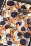 Rosemary roasted root vegetables Royalty Free Stock Photos