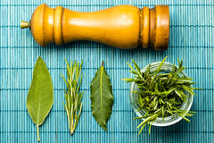 Rosemary , sage , and laurel leaves with a pepper mill Stock Photography