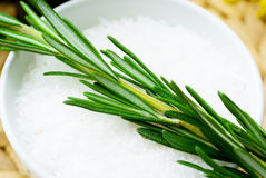 Rosemary with  salt bath Royalty Free Stock Images