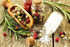 Rosemary, salt and different kinds of pepper Stock Images